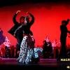02 flamenco