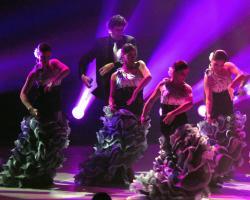 thumb_pre_1412163706__flamenco-barcelona